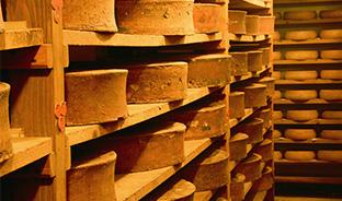 Topo sur les fromages des Alpes