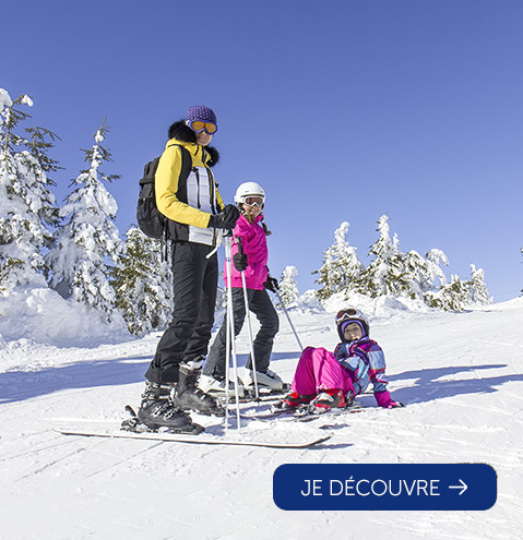Your holidays in the Alps this winter
