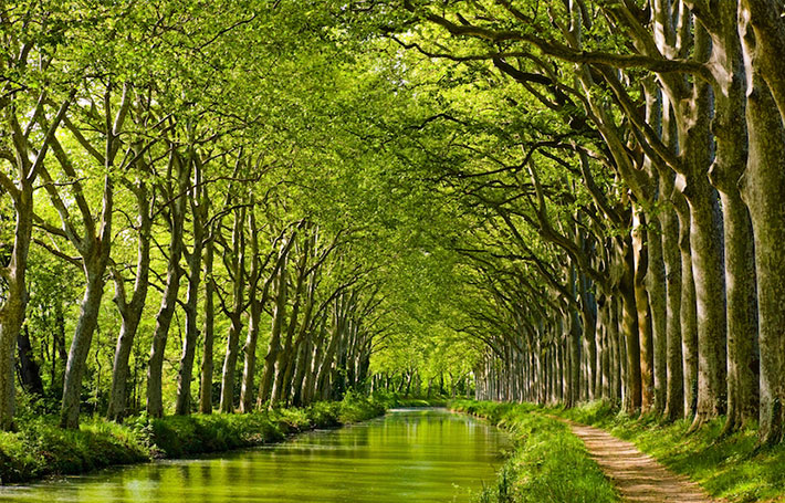 Découvrez le canal du Midi pendant ses anniversaires !