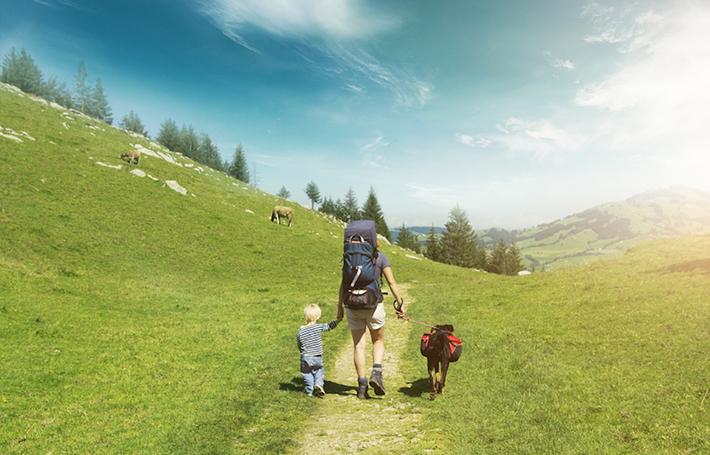 Découvrez la Cani-rando : la randonnée qui a du chien !